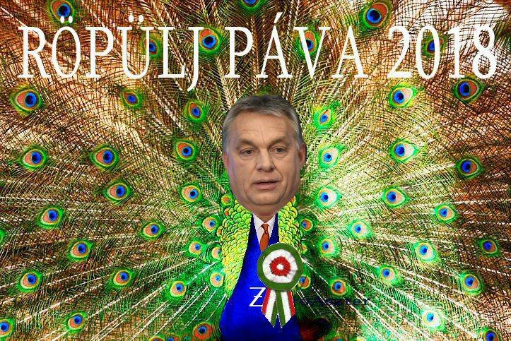 Orbán Viktor - Pávatánc